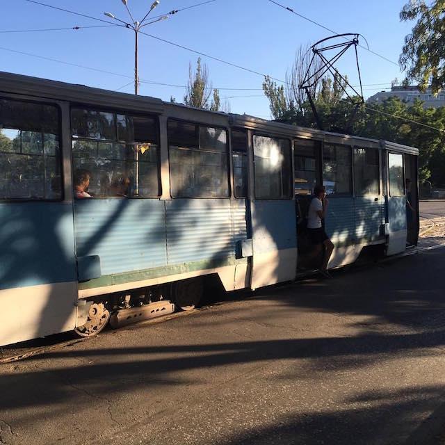 nikolaev15