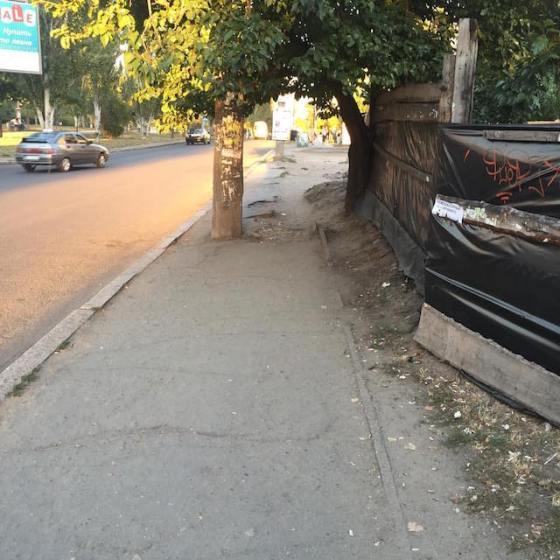 nikolaev19